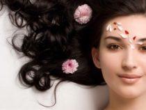 Cách đắp mặt nạ bằng từ nha đam tươi đúng cách để trị mụn & thâm