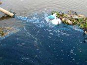 Thực trạng ô nhiễm môi trường và giải pháp khắc phục