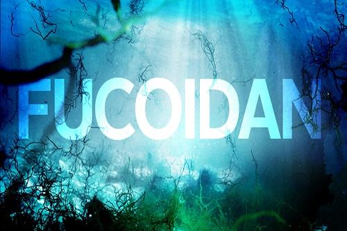 Thuốc Fucoidan của Nhật loại nào tốt-1