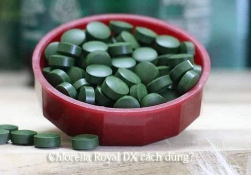 Tảo lục có tăng cân không? Chlorella Royal DX cách dùng?-1